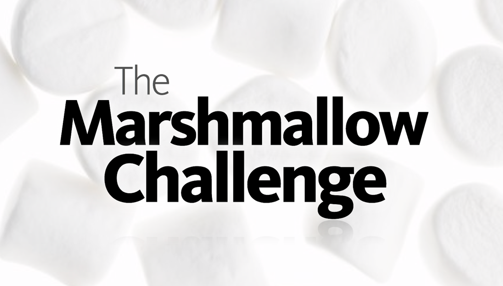 Bluesky Personnel Solutions Marshmallow Challenge